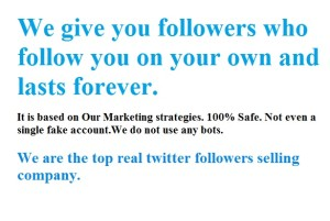 best real twitter followers selling company