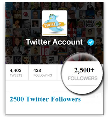 2500 Twitter Followers